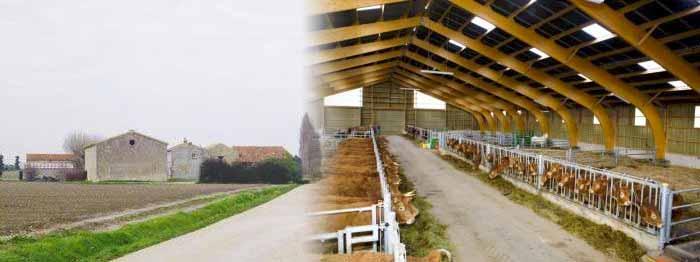 Vente viande direct producteur Bouches du Rhône